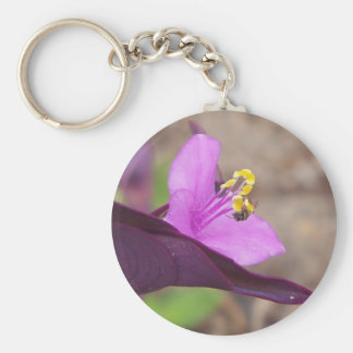 purple plant called spiderwort and a tiny bee keychain