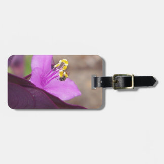 purple plant called spiderwort and a tiny bee luggage tag