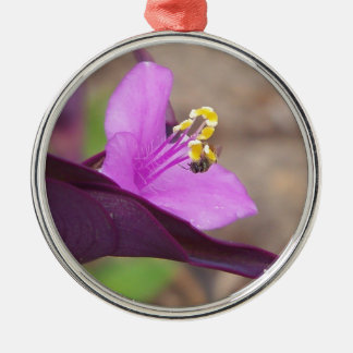 purple plant called spiderwort and a tiny bee metal ornament