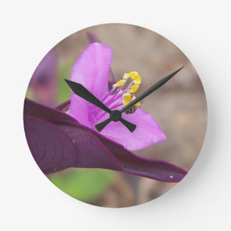 purple plant called spiderwort and a tiny bee round clock