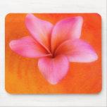 Purple Plumeria Tropical Frangipani Flower Orange Mouse Pad