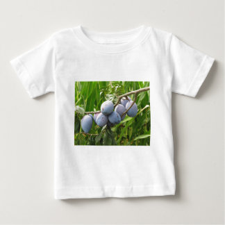 Purple plums hanging on the tree . Tuscany, Italy Baby T-Shirt