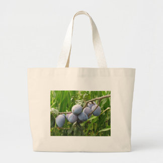 Purple plums hanging on the tree . Tuscany, Italy Large Tote Bag