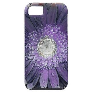 Purple Rain gerbera iPhone 5 Cases