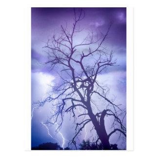 Purple Rain Postcard