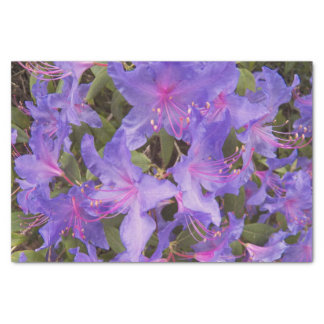 Purple Rhododendron Blooms Floral Tissue Paper