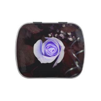 purple rose colorized flower against dark backgrou