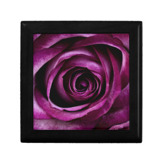 Purple Rose Gift Box