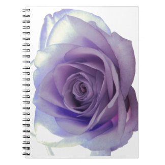 Purple Rose Notebook