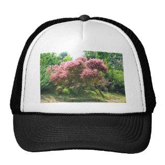 Purple Smoke Tree Trucker Hat