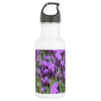 Purple Spanish Lavender Flower 532 Ml Water Bottle
