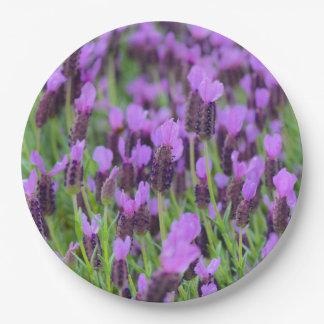 Purple Spanish Lavender Flower 9 Inch Paper Plate