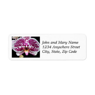 Purple Speckled Moth Orchid Return Address