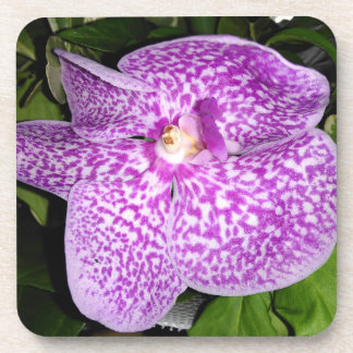 Purple Speckled Orchid Coaster
