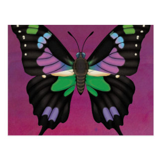 Purple Spotted Swallowtail Postcard