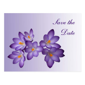 Purple Spring Floral Save the Date Wedding Postcard