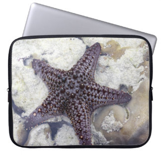 Purple Starfish Laptop Sleeve