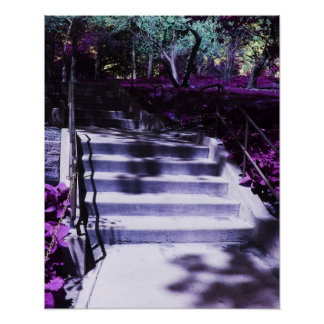 Purple Steps by the Purple Flowers Poster