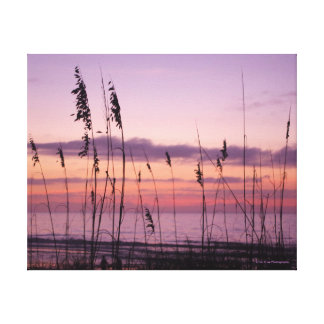 Purple Sunset with Sea Oats Canvas Print