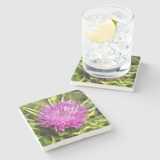 Purple Thistle Wildflower Stone Coaster
