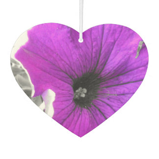Purple Tinted Black and White Petunias Car Air Freshener