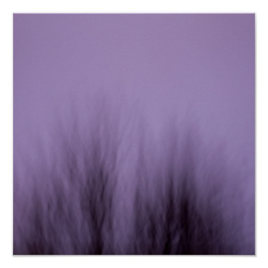 "purple tree 16""x16"" / 40x40 cm poster"