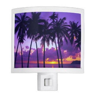 Purple Tropical Sunset 3 Night Light