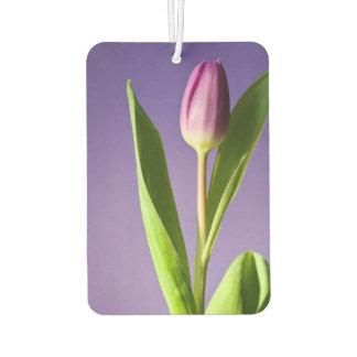 Purple tulip air freshener