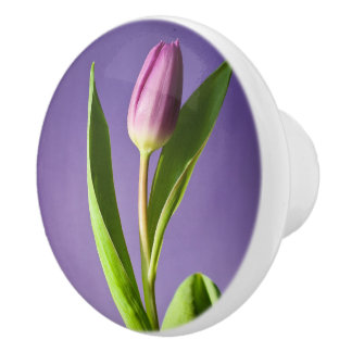 Purple tulip ceramic knob