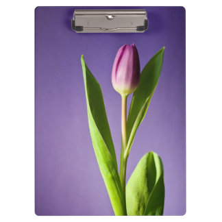 Purple tulip clipboard