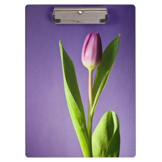 Purple tulip clipboards