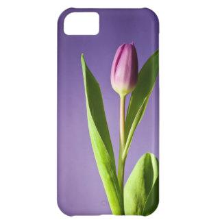 Purple tulip cover for iPhone 5C
