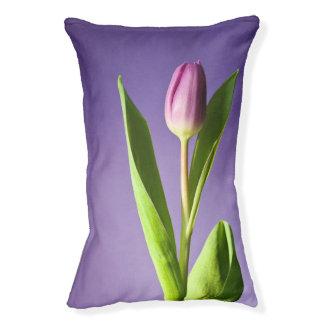 Purple tulip pet bed