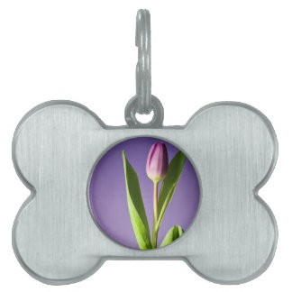 Purple tulip pet ID tag