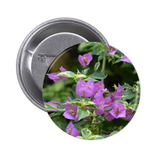 Purple Variegated Crepe and Myrtle 2 Inch Round Button