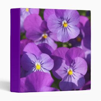 Purple Viola 3 Ring Binder