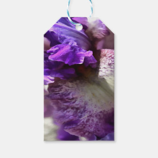 Purple, Violet and Mauve Iris Abstract Gift Tags