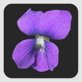 Purple Violet sticker