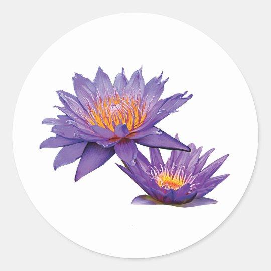 Purple Water Lilies Classic Round Sticker