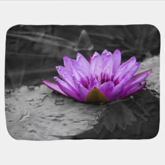 Purple Water Lily 002 Black and White Background Baby Blanket