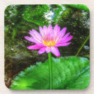 Purple Water Lily Beverage Coaster