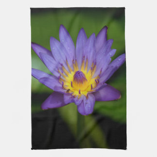 Purple Water Lily Kitchen Towel