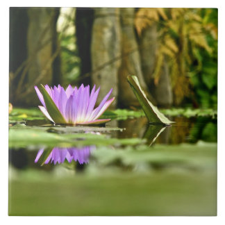 PURPLE WATER LILY REFLECTING IN A POND TILE