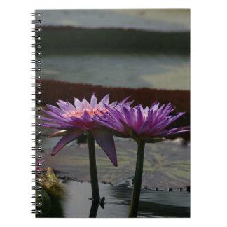 Purple Waterlilies Lotus Notebook