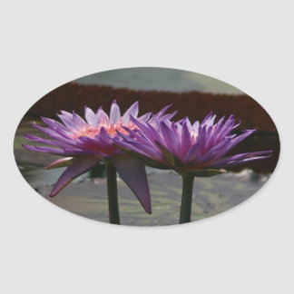 Purple Waterlilies sticker