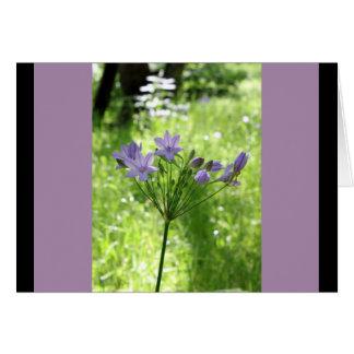 Purple Wildflower Blank Note Card
