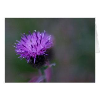 Purple wildflower card