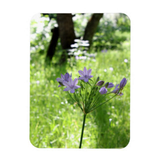 Purple Wildflower Magnet