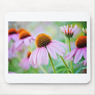 Purple Wildflowers Mouse Pad