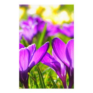 Purple & Yellow Crocus flowers Personalised Stationery